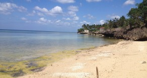 For Sale – Tabuelan – Beach Lot